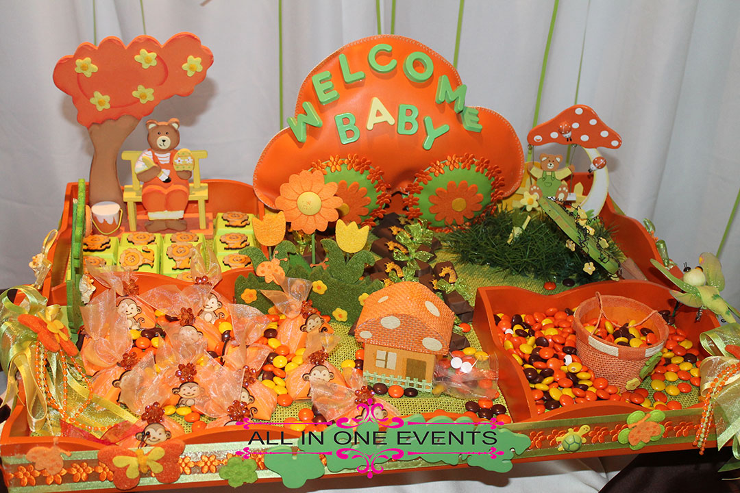 Wissam & Wasseem's Baby Shower - All In One Events